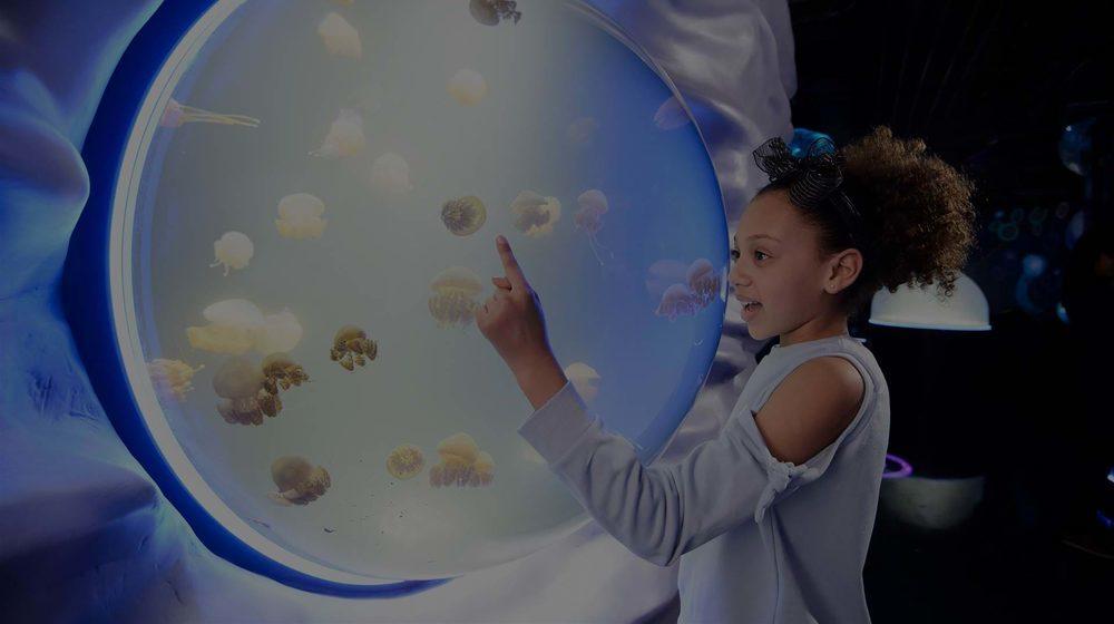 Sea Life London Aquarium : une petite fille émerveillée